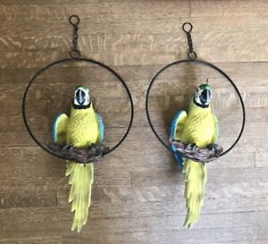 Resin pair of Blue & Green Macaw Parrots Wall Decor by Design Toscano?