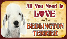 All you need is love Bedlington Terrier e un-Sign-cane cani KENNEL CLUB KC