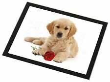 Golden Retriever Dog with Rose Black Rim Glass Placemat Animal Table, AD-GR54RGP
