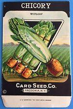 *Original* CHICORY Witloof CARD SEED Vegetable Packet Pack 1930's Fredonia N.Y.