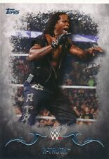 #26 R-TRUTH 2016 Topps WWE Undisputed
