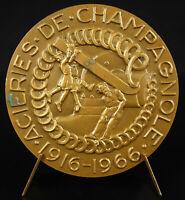 Medal Paul Faber Allegorie Mills of Champagnol 1916-1966 Turin Steelworks
