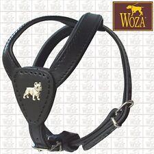 Premium Geschirr französische Bulldogge Vollleder WOZA Soft Lederhalsband Fg2979