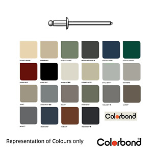 COLORBOND Dome Pop Rivets Painted (dia 1/8th - 3.2mm x 8.6mm long)