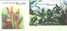 Malaysia 2012 Aromatic Plants ~ FDC