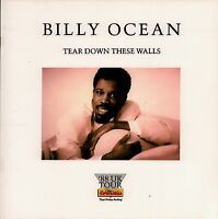 BILLY OCEAN / BASIA 1988 TEAR DOWN THESE WALLS TOUR  PROGRAM BOOK / NM 2 MNT