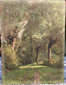 Tableau Ancien Huile Paysage Arbres Clairière Charles ALEX XIXe Barbizon Corot