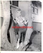 Vintage Chris Noel SEXY CANDID PINUP 60s Publicity Portrait