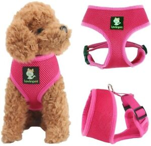Comfort Harness Mesh Padded Vest for Small Pets, Puppies and Cats (Pink - XS)