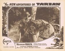 NEW ADVENTURES OF TARZAN 1935 Herman Brix Chapter 7 VINTAGE SERIAL Lobby Card 4