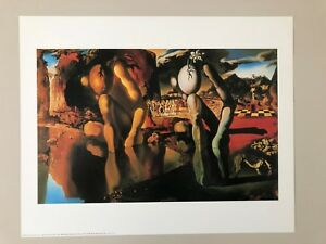 DALI,'METAMORPHOSIS OF NARCISSUS,1936' RARE  AUTHENTIC 1990 ART PRINT