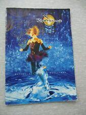 Riverdance, the show, a souvenir Programme, English & German, 1999. cs543