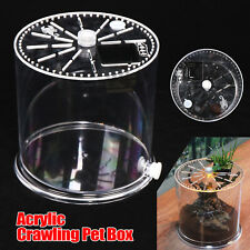 Climbing Pet Breeding Cylinder Acrylic Clear Spider Insect Habitat Case Lizard