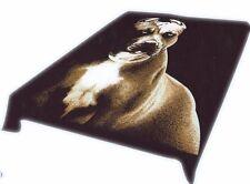 "Brand New pitbull print Queen size 79""x95"" Luxury blanket"