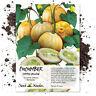 100Pcs Lemon Cucumber Seeds Cucumis Sativus Vegetable Fruit Garden Yard Plant RR