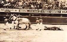 Bull Ring Bull Fight Dragging Bull  Real Photo Antique Postcard J66603