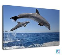 Leaping dolphins charming blue sea for living room Canvas Wall Art Picture Print