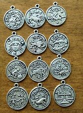 12pcs Tibetan Silver Metal Zodiac Pendant/Bracelet Charm Findings, Star Signs