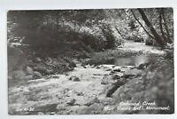 Vintage RPPC Redwood Creek Muir National Monument Golden Gate Park CA Postcard