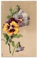 083020 LOVELY VINTAGE A/S C KLEIN POSTCARD PANSIES TUCK ART SERIES 6097