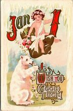 Wish you Good Luck January 1 Polar Bear Embossed Postcard