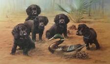 James Killen Low Country Treasures Boykin Spaniels A/P Art Print