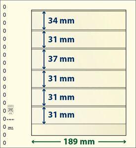 Lindner T-Blanko-Blätter mit 6 Taschen im 10er Pack  Art.-Nr. 802 601