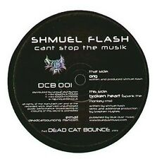 SHMUEL FLASH - Can't stop the music - Dead cat bounce
