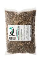Graines de chanvre Bio 500g TERRALBA à faire germer enzymes croissance sprout