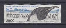 French Antarctica Taaf 328 Penguin Bird - Birds (MNH)