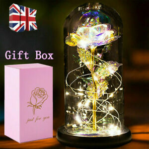 Beauty and the Beast Rose in Glass Light Up Enchanted Dome Lamp Christmas Gifts