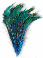 """10 Pcs DYED PEACOCK SWORDS BLACK 20-25/""""  Feathers; Costume//Hats//Bridal//Pads"""