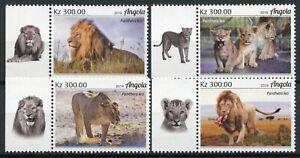 Angola Wild Animals Stamps 2019 MNH Lions Lion Big Cats Fauna 4v Set