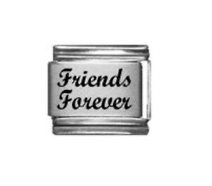 9mm Italian Charms L110  Friends Forever Fits Classic Size Bracelet