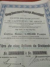 SIBOGA Rubber Plantation Share Certificate 1910, Sumatra Indonesia Netherlands