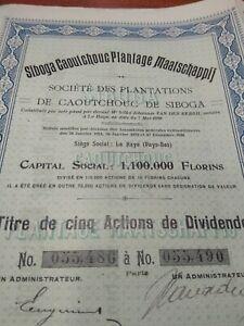 SIBOGA Rubber Plantation Share Certificate 1910, Sumatra Indonesia Netherlands