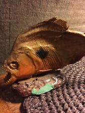 Piranha Fish Taxidermy on wood mount / Father's Day Gift