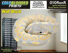 Removeable Wall Decal Snake Ball Python Cold Blooded Prints Sticker 010RenR