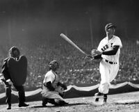 TED WILLIAMS 8X10 CELEBRITY PHOTO PICTURE BASEBALL