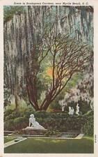 Vintage POSTCARD c1940 Scene in Brookgreen Gardens near MYRTLE BEACH, SC 17314