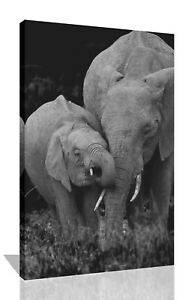 Elephants - Mum And Baby, Black And White Canvas Wall Art Picture Print