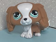 Littlest Pet Shop #1825 King Charles Spaniel Puppy Dog Green Eyes