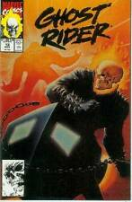 Ghost Rider (vol. 2) # 13 (painted cover) (USA, 1991)