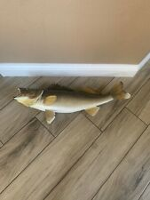 """30"""" Walleye Taxidermy Fish Mount"""
