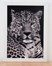 Leopard - Druck schwarz / weiß  im weißen Holzrahmen - Bild Wohnen Dekoration