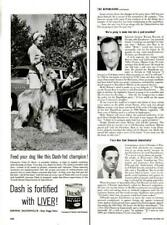 1954 Dash Print Ad Armour Dog Food Afghan Champion Yabu El Myia