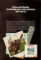 1960's Vitnage ad for Kodak Processing/Kodachrome slide (051013)