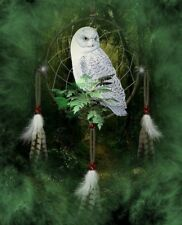 Native American Dream Catcher Enchanted Forest Owl 8.5x11 Matte Art (Read Below)