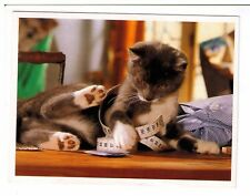 Postcard: Cat with Tape Measure - Whiskas 1993