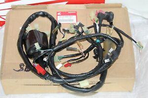 HONDA Système Électrique Pour XL600V Transalp 91-93 32100-MS6-920